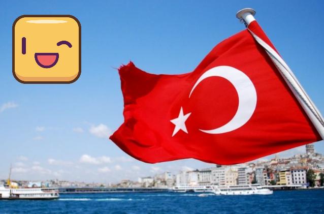 Турция, вывод денег с Payoneer