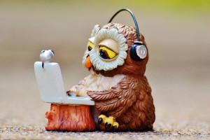 Курсы онлайн: бесплатные и платные